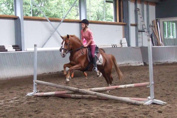 Ponykamp17